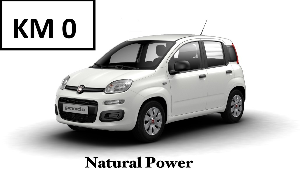 FIAT PANDA  0.9 TWIN AIR NATURAL POWER 85 CV  € 12.800,00 CHIAVI IN MANO  € 201.00 RATA MENSILE